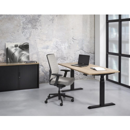 Buroflex YF3 bureau zit/sta elektrisch